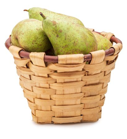 Freshly picked raw green pears from the tree (variety conference, Pyrus communis conference) in wicker basket. Isolated on white background