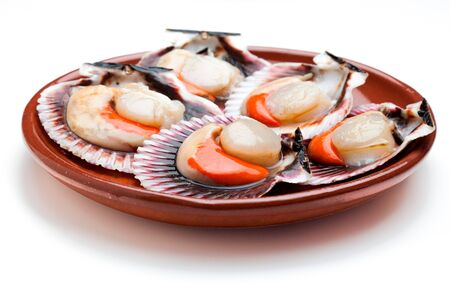 Scallops fresh, raw and clean on clay plate (zamburiñas)
