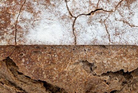 Crispy rustic homemade bread texture. Close-up of whole rye bread. Copy space. Standard-Bild