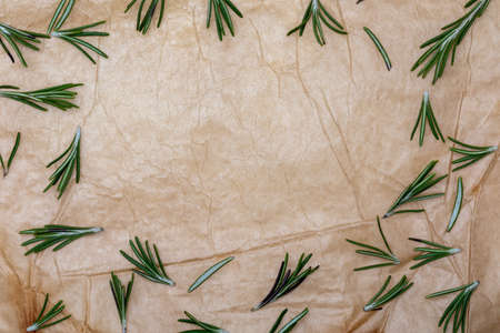 Paper texture with Branches and leaves of rosemary with copy space (spices collection). On rustic background. Top view.