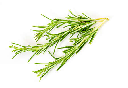 3 (three) delicate branches of rosemary. Foreground. Isolated on white background. Stock fotó