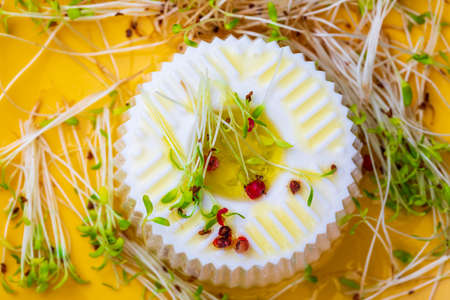 Fresh cheese, tender alfalfa sprouts and virgin olive oil for a healthy and healthy diet. Top view and copy space.