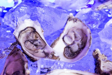 two oysters served on ice