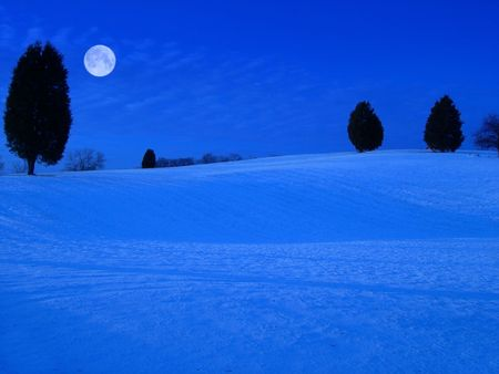 View of a snow covered field at night in winter with moon.