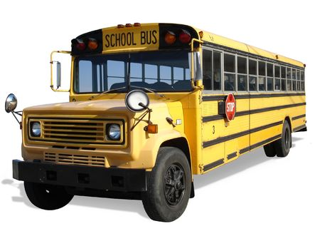 bus stop: School Bus
