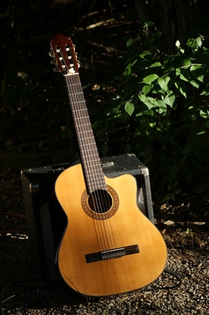 View of a country guitar in a rustic setting.