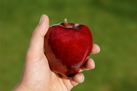 View of an apple in hand against green background. Includes path for easy clipping.