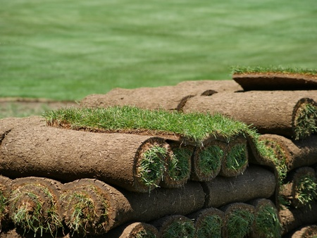 View of stacked rolls of sod on a turf farm. Stock Photo
