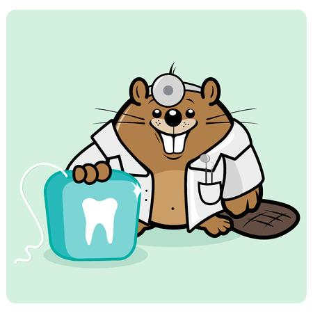 dental floss: Beaver dentist holding a dental floss. Illustration