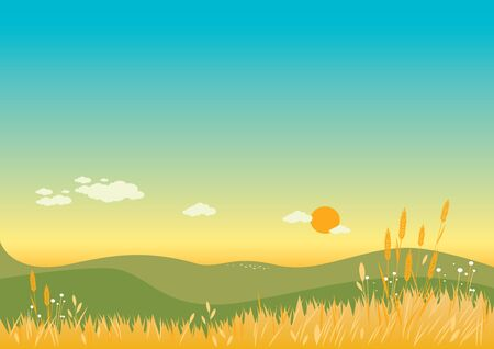 wheat grass: Summer Background. Illustration of a warm summer landscape with flowers wheat and grass. Illustration