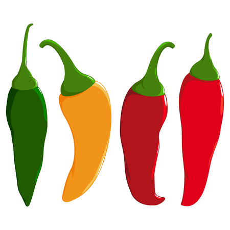A set of hot chili peppers in four colors: red, green and yellow chili peppers.