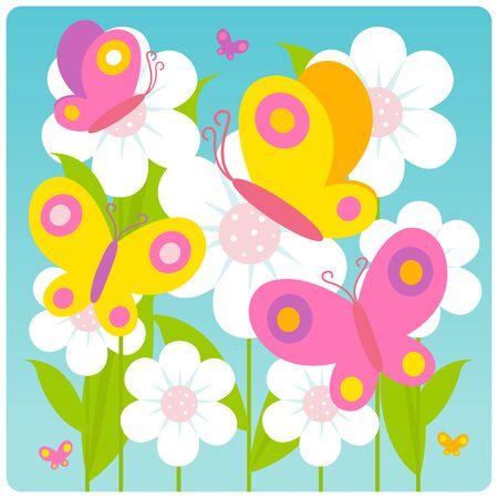 mariposas volando: Las mariposas vuelan en las flores blancas en primavera