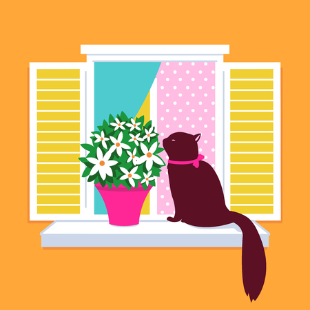 window sill: Cat sitting on a window sill