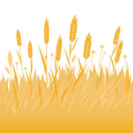 Gebied van tarwe, gerst of rogge achtergrond.