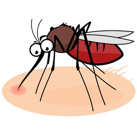 sucking: Cartoon mosquito sucking blood