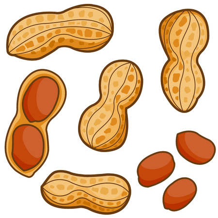 Peanuts Vectores