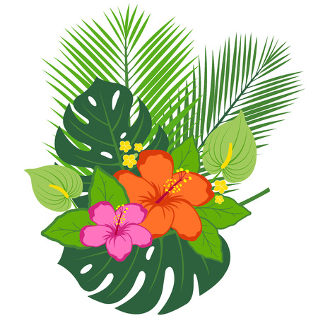 philodendron: Tropical plants and flowers arrangement.