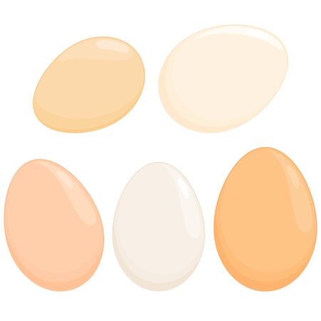 Eggs in various shapes and colors. Illustration