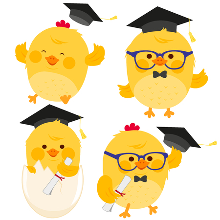 Vector illustration set of cute little chickens with graduation hats and diplomas.