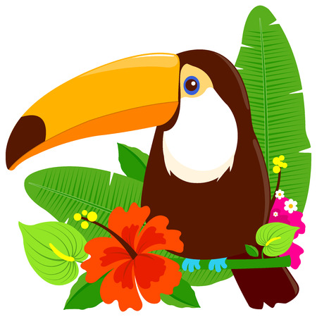 Tropical summer arrangement with toucan bird and exotic plants.