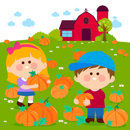 Children at the farm picking pumpkins at the pumpkin patch. Vector illustration Illustration