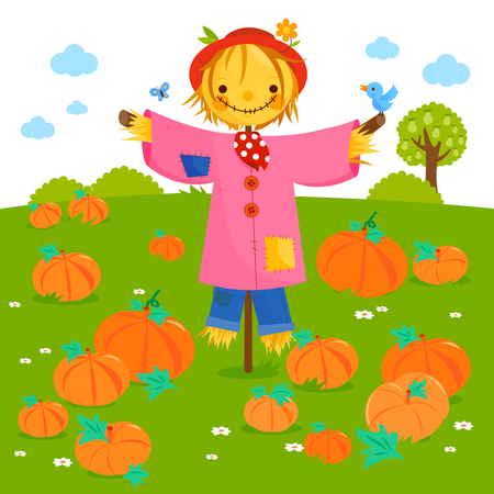 Rural landscape with pumpkin field and a scarecrow. Vector illustration Illustration