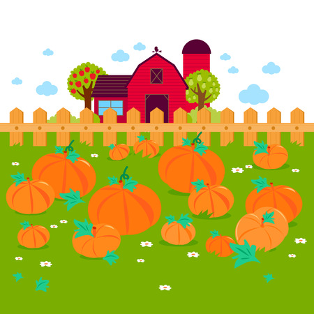 Rural landscape with a pumpkin field and a farmhouse.