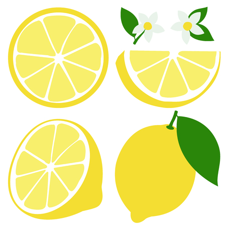 Whole and half sliced lemon fruit icons, lemon flowers and leaves. Vector illustration Illustration