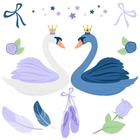 Vector fairy tale ballerina set with beautiful black and white princess swans, ballet shoes, feathers, flowers, stars and ribbons