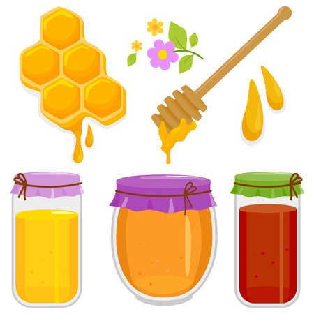 Honey illustration collection with honey jars, honeycomb and honey dipper. Vector illustration