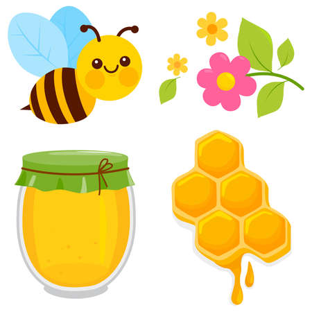 Honey collection with bee, honeycomb, jar of honey and flowers. Vector illustration Иллюстрация
