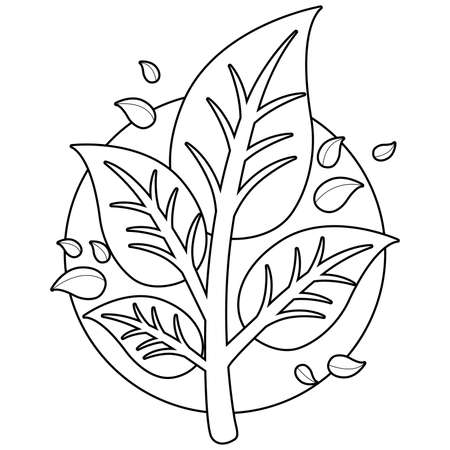 Tree branch with leaves. Vector black and white coloring page
