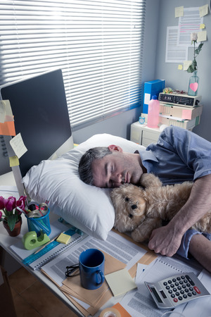 over burdened: Funny office worker sleeping in the office overnight with teddy bear.