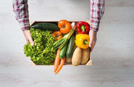 verduras verdes: Granjero que sostiene una caja de madera llena de verduras cosechadas frescas de su jardín