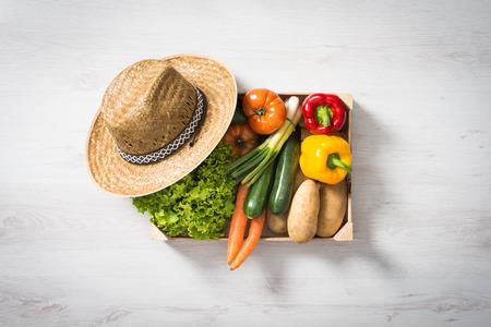 Vers geoogste groenten in een houten kist, bovenaanzicht Stockfoto