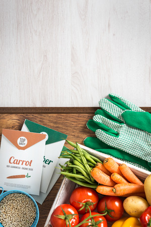 a seed: Gardening and farming concept with fresh vegetables in a box, gloves and seeds, top view