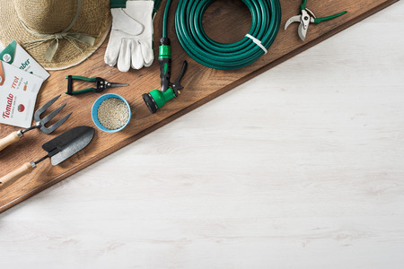 farming tools: Gardening and farming tools on a wooden table with blank copy space, top view