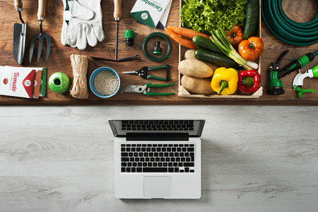 Gardening and farming tools on a wooden table and laptop, top view