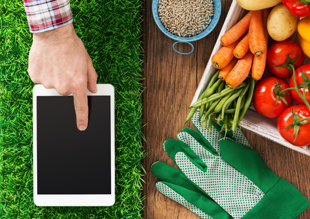 Digital tablet on grass, fresh vegetables and farmers hand touching the touch screen display, gardening and farming app concept