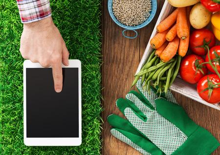 granjero: tableta digital en el césped, verduras frescas y la mano del agricultor tocar la pantalla, la jardinería y la agricultura aplicación concepto táctil