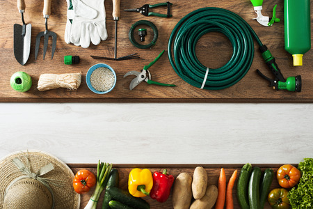 Gardening and farming tools on a wooden table and freshly harvested vegetables, blank copy space, top view