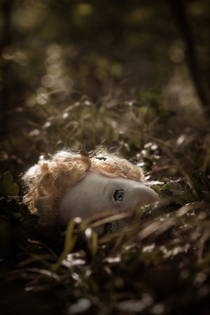 damn: A dolls head lying in the middle of a path of a dark forest