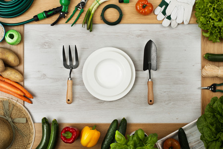 table set: Gardening tools and vegetables composing a frame, table set at center composed of dish, weeding fork and trowel, top view