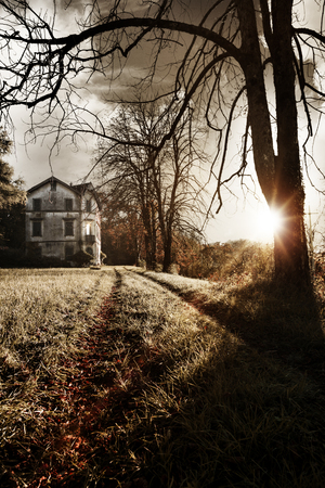 haunted: An old haunted house stands at the end of a driveway littered with dry leaves
