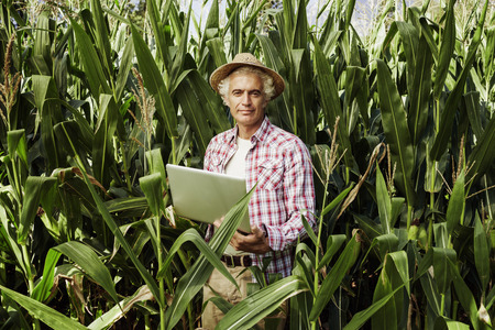 ラップトップを使用してフィールド、背景、技術および農業の概念のトウモロコシの農夫の笑みを浮かべてください。 写真素材