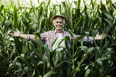 maize cultivation: Smiling farmer posing with open arms in the corn field, agriculture and success concept Stock Photo