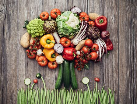 worktop: Colorful lush tree made of freshly harvested organic vegetables on a rustic wooden worktop, nutrition and nature concept Stock Photo