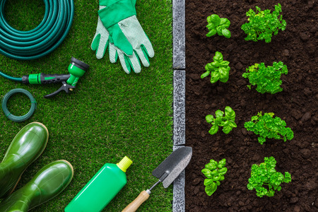 Gardener tools on the grass, plants growing and fertile soil, farming and gardening concept Stok Fotoğraf - 60674843