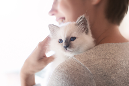 Young smiling woman hugging and cuddling her cute newborn kitten, pets and lifestyle concept