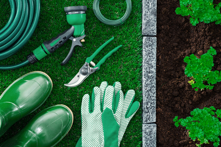 Gardening tools on the grass and plants growing on the fertile garden soil, farming concept